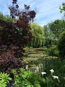 escola de paisagismo; workshop de fotografia de jardins e natureza