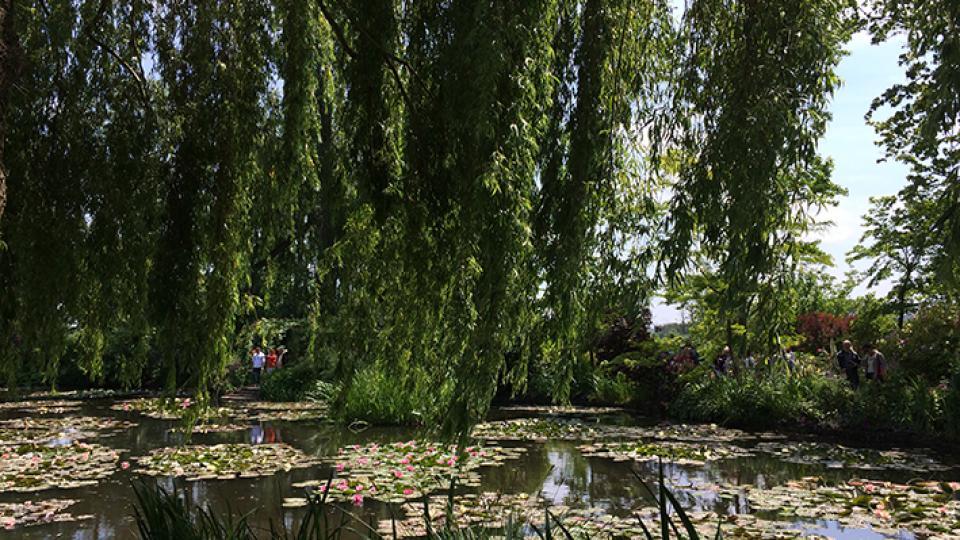 2. Jardins du Monet France b