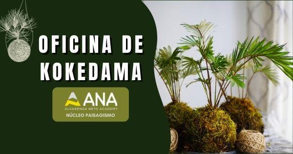 Curso de Kokedama - Anacademy