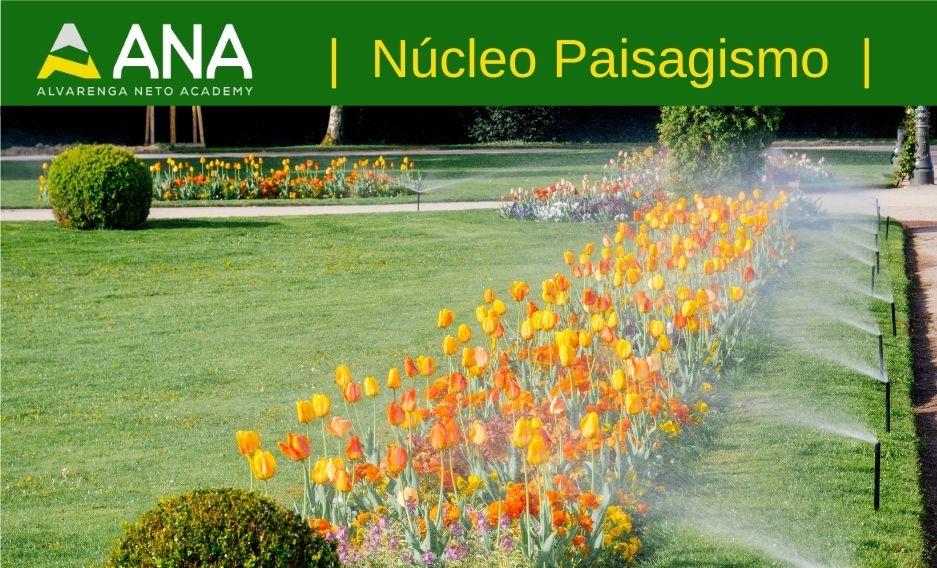 Curso avançado de irrigação no paisagismo